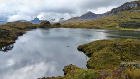 Cajas National Park, Toreadora lake in cloudy day stock photo