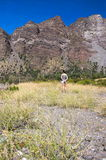 Cajon del Maipo - Chile - XXV Imagens de Stock Royalty Free