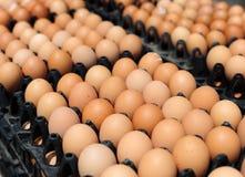 Cajones plásticos con los huevos blancos y marrones frescos Fotos de archivo