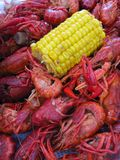 Cajun Boiled Crawfish Royalty Free Stock Photography