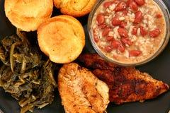 Cajun Catfish and Chicken Stock Image