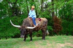 Cajun Cowgirl Royalty Free Stock Image