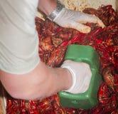 Cajun a fait cuire l'ébullition d'écrevisses et de crevette dans le coffre de glace Photo libre de droits