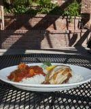 Cajun Fish Dinner royalty free stock photo