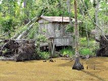 Cajun Fishing Shack. A replica of a cajun fishing shack in a Louisianna swamp royalty free stock image