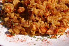 Cajun Jambalaya Closeup Royalty Free Stock Photography