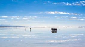 Caka Salt Lake Stock Afbeelding