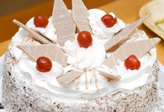Cake. Fresh cream cake with sugared cherry and chocolate pieces Royalty Free Stock Photos