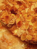 Cake with almond flakes Royalty Free Stock Photo