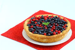 Cake with Berries. Cheesecake with mixed berries on a plate. Shallow DOF royalty free stock images