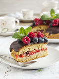 Cake with berries Royalty Free Stock Photo