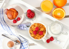 Cake and berry Stock Images