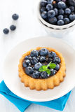Cake with bilberries. On a plate Royalty Free Stock Photo