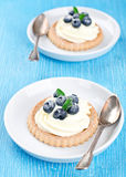 Cake with bilberries. On a plate Royalty Free Stock Image