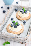 Cake with bilberries. Bilberry pie on a tray Stock Image