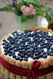 Cake with blueberries. Homemade summer cake with blueberries Stock Photography
