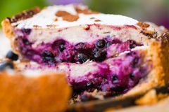 Cake with blueberry Stock Photos