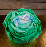 Cake Cabbage and Child Royalty Free Stock Photography