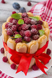 Cake Charlotte With Raspberries And Plums. Stock Images