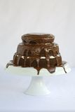 Cake Chocolate. Tiered Chocolate Cake with vanllia filling and dripping chocolate topping and frosting Royalty Free Stock Photography
