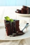 Cake chocolate. Chocolate cake, topped with fudge and mint Royalty Free Stock Photo