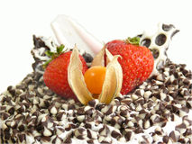 Cake with chocolate chips and berries. Close up view of a cake coated with milk and dark chocolate chips decorated with strawberries and physalis berry Stock Photos