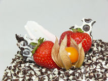 Cake with chocolate chips and berries (right side). Close up view of a cake coated with milk and dark chocolate chips decorated with strawberries and physalis Stock Photography