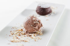 Cake and chocolate ice cream Royalty Free Stock Photography