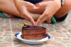 A cake for chocolate lovers. Royalty Free Stock Photos