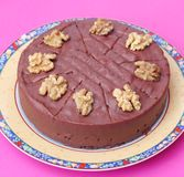 Cake with chocolate and walnuts Royalty Free Stock Image