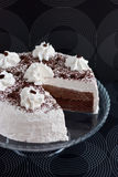 Cake with cocoa and cream Royalty Free Stock Photos