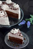Cake with cocoa and cream Stock Images