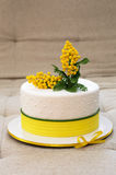 Cake covered with mastic Stock Image