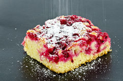 Cake covered by redcurrants and strewed with powdered sugar Stock Photography