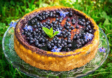 Cake with cream cheese and blueberries Royalty Free Stock Image