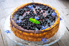Cake with cream cheese and blueberries Stock Photo