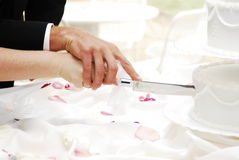 Cake cutting. Bride and groom cutting the cake royalty free stock image