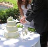 Cake cutting Royalty Free Stock Image