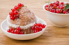 Cake is decorated with berries and red currant in a bowl/cake is decorated with berries and red currant in a white bowl. Dessert cupcake berry sweet sugar food royalty free stock images