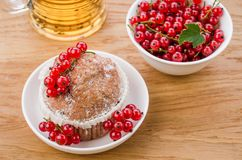Cake is decorated with berries and red currant in a white plate/cake is decorated with berries and red currant in a white plate. Top view dessert cupcake berry royalty free stock images