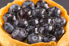 Cake a dessert with bilberry Stock Photo
