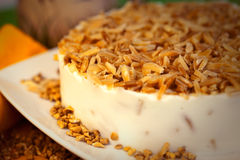 Cake dessert pie. Sweet nutty cake dessert pie royalty free stock photography