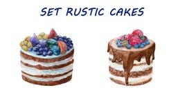 Cake in een rustieke stijl met fruit watercolor Royalty-vrije Stock Fotografie