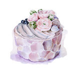 Cake with flowers and blueberries. Hand drawn watercolor illustration Stock Images
