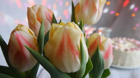 Cake and flowers. Colorful tulips in white vase standing on table in living room. stock video footage