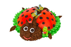 Cake in the form of a Ladybug Royalty Free Stock Image