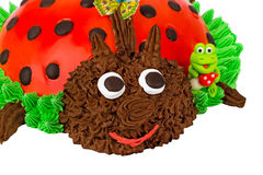 Cake in the form of a Ladybug Royalty Free Stock Photography