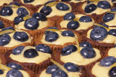 Cake with fresh bilberries. Close-up of cake with fresh bilberries, selective focus royalty free stock photos