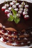 Cake with fresh cherries and chocolate vertical macro. Delicious cake with fresh cherries and chocolate on the plate closeup. Vertical Stock Image