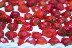 Cake with fresh strawberries Royalty Free Stock Image